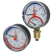 Combined thermometer/pressure gauge