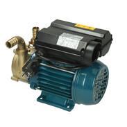 Electric pump ENM20
