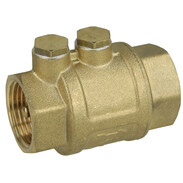 """ROMA 1"""" check valve with 2 outlet plugs"""